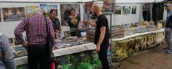 Kultur findet Stadt 15.06.2019 – Krefeld